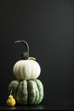 Pumpkins and gourds on a black table with black background