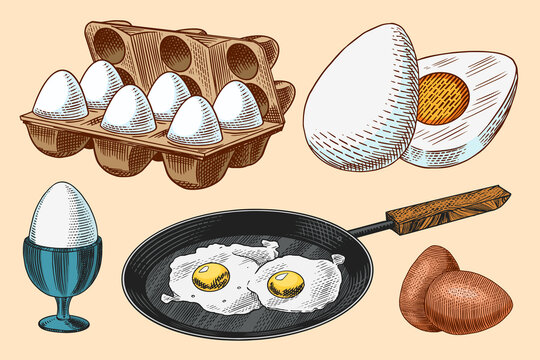 Frying pan with fried eggs and scrambled omelette, Shell and yolk. Farm product. Engraved hand drawn vintage sketch. Woodcut style. Vector illustration for menu or poster.