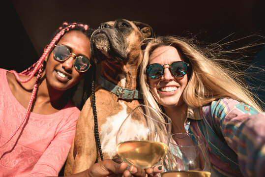 Young multiracial women friends having fun with their dog taking a selfie and drinking wine - Focus on right girl