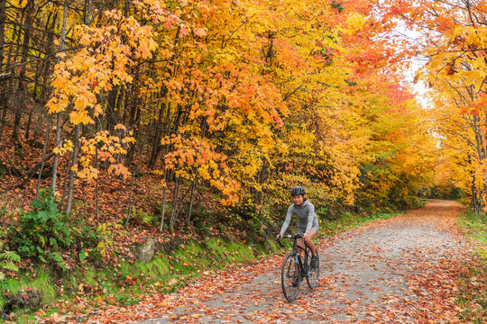 Autumn biking happy woman traveling on road bike through foliage path in nature forest outdoors. Canada fall travel destination.