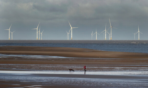 A woman walks her dog in front of the Burbo Bank offshore wind farm near New Brighton