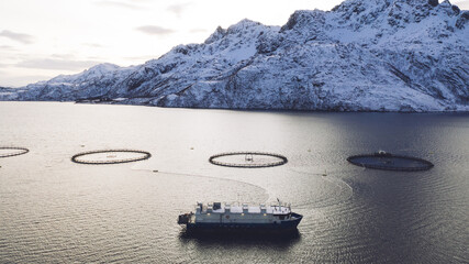 Salmon fish farming in Norway sea. Food industry, traditional craft production, environmental conservation. Aerial view of round mesh for growing and catching fish in arctic water surrounded by fjords