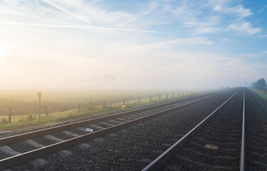 Empty railroad tracks disappearing into the spring fog.