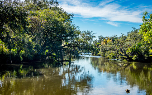 St Lucie River 1