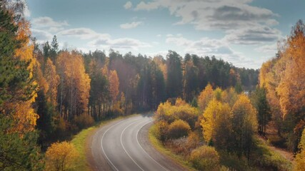 Wall Mural - Car travelling on remote highway road in beautiful yellow autumn forest landscape, aerial view. 4K UHD.