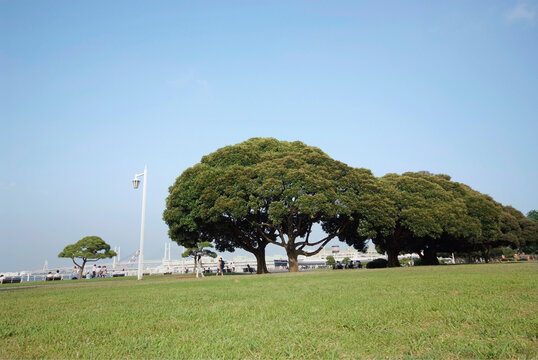 山下公園(神奈川県横浜市)