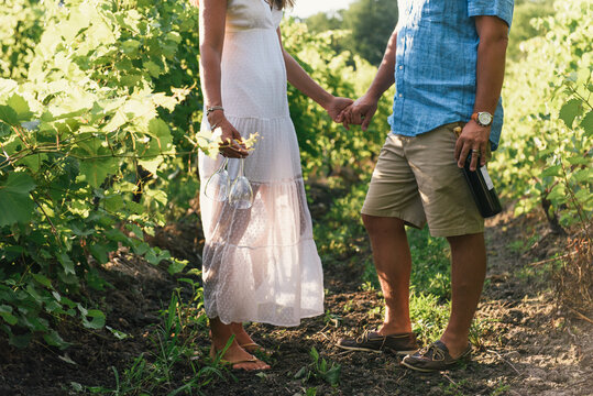 Low half crop of couple holding hands with glass of wine in vineyard