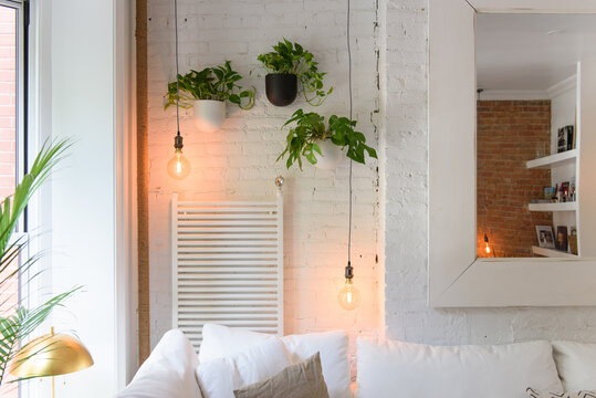 Interior detail of hanging plants and warm lights over plush couch