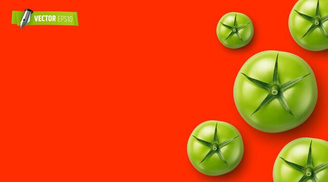 Arrière plan rouge avec tomates vectorielles
