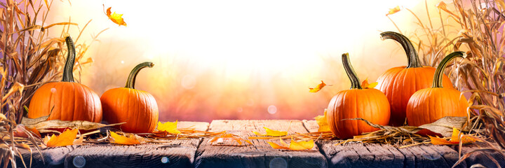 Pumpkins With Cornstalks And Falling Leaves On Wooden Harvest Table At Sunset - Harvest And Thanksgiving