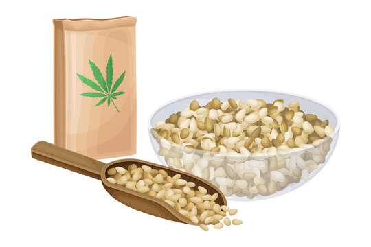 Hemp Seeds in Wooden Scoop and Bowl with Craft Paper Package Vector Illustration