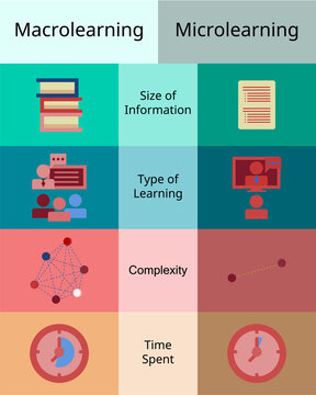 Comparison of macrolearning and microlearning vector