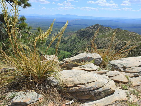 View from the Mogollon Rim in the Coconino National Forest, Yavapai County, Arizona.