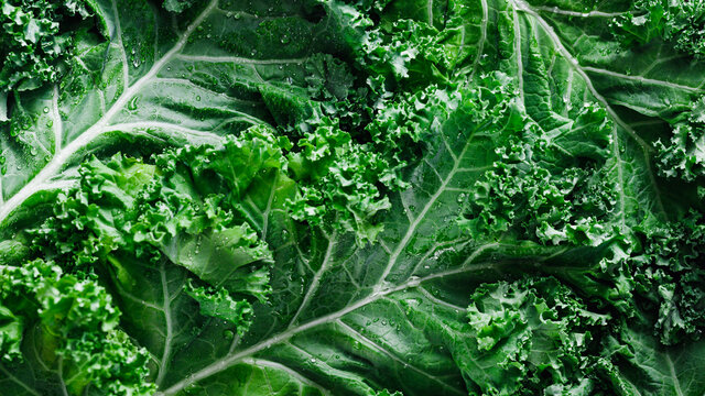 Top view of fresh curly kale salad, food background, macro photography