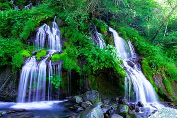 Photo sur Aluminium Vert 滝