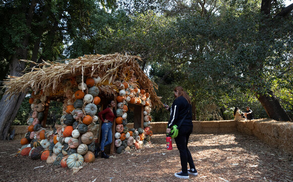 """A girl poses inside a pumpkin house installation during the """"Halloween at Descanso"""" event at Descanso Gardens in La Canada Flintridge"""