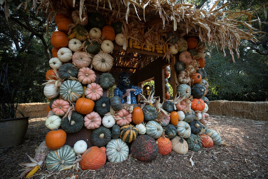"""Kids wearing costumes pose inside a pumpkin house installation during the """"Halloween at Descanso"""" event at Descanso Gardens in La Canada Flintridge"""