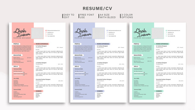 Modern Resume/CV Template with Colour Options