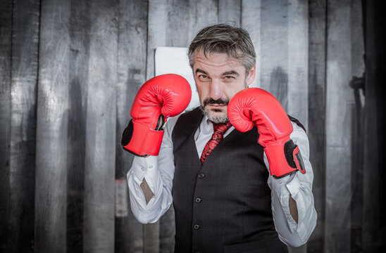 Portrait businessman wearing suite with fighting gloves posing to show combat with competitor in business for successful in purpose.