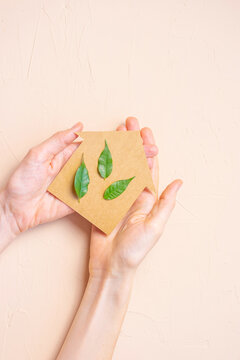 House made of craft paper and green leaves of a plant in female hands on a light background. Eco-friendly home concept, healthy lifestyle, zero waste.
