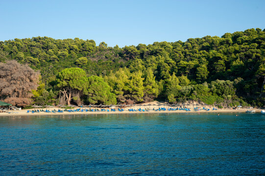 Secluded beach with trees, Skopelos Island Greece
