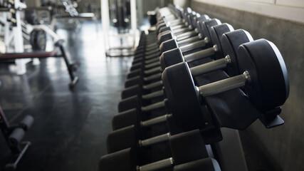 metal dumbbells on rack at fitness gym