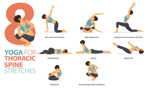 8 Yoga poses or asana posture for workout in Thoracic spine stretch concept. Women exercising for body stretching. Fitness infographic. Flat cartoon vector