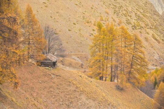 chalet de montagne en automne