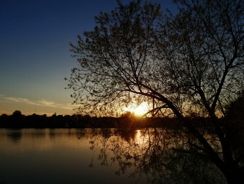 Dramatic sunset reflected in the waters of a lake, with the silhouette of a tree in the foreground