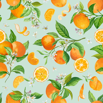 Mandarin Watercolor Floral Pattern, Vector Seamless Fruit Background, Citrus Fruits, Flowers, Leaves