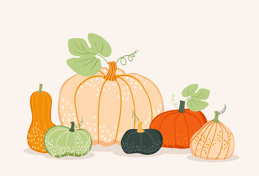 Vector card with colorful pumpkins