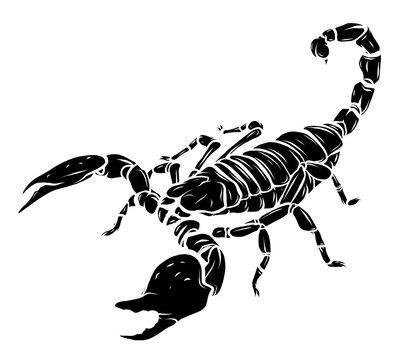 black silhouette vector Scorpion tattoo - ornate exquisite scorpion image, sign horoscope