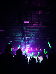 crowd of people dancing at concert