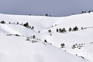Mountain White Snow