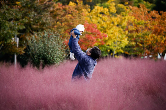 A man lifts his child as they pose for a photograph in a pink muhly grass field in Hanam