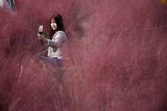 A woman takes a selfie in a pink muhly grass field in Hanam