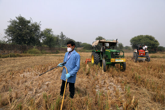 A man sprays newly-developed bio-decomposer solution in a field to prevent stubble burning, in New Delhi