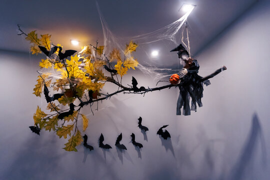 Witch on a broom, bats, spider, net and yellow leaves are good decoration for halloween party, toned, dark.
