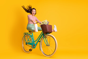 Photo sur Plexiglas Dinosaurs Full length body size photo of funky girl riding bicycle keeping legs up screaming isolated on bright yellow color background