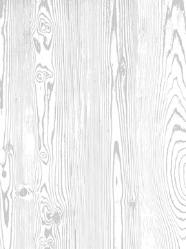 Vector wood texture. Natural material on white background.