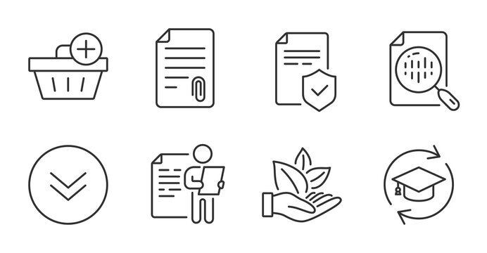 Organic product, Attachment and Job interview line icons set. Analytics chart, Insurance policy and Scroll down signs. Continuing education, Add purchase symbols. Leaf, Attach file, Cv file. Vector