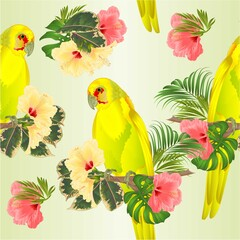 Seamless texture parrot in Yellow bird Indian Ringneck Parrot alexander in Yellow on branch with tropical flowers hibiscus, palm,philodendron watercolor on a white background vintage vector