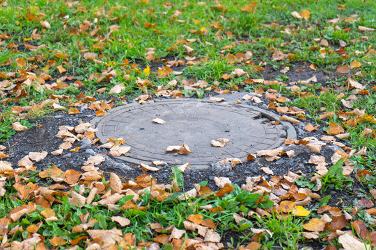 A manhole made of plastic on the lawn with the grass and leaves