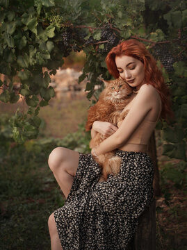 Red-haired girl with a red cat in the countryside near a vineyard on a stump.