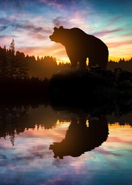 Big bear silhouette on mountains background at sunset