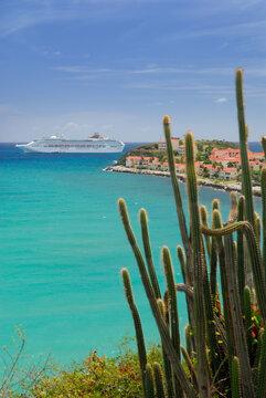 Great Bay St Maarten with cruise ship and cactus