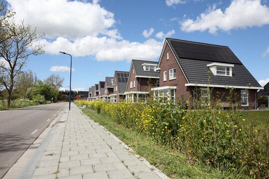 New neighbourhood