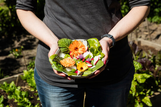Close-up of woman holding plate with lettuce and edible flowers