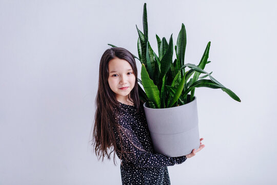 Girl holding potted plant in hand while standing against white background in studio