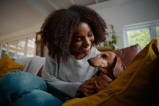 Smiling african woman playing with pet wiener dog at home sitting on couch